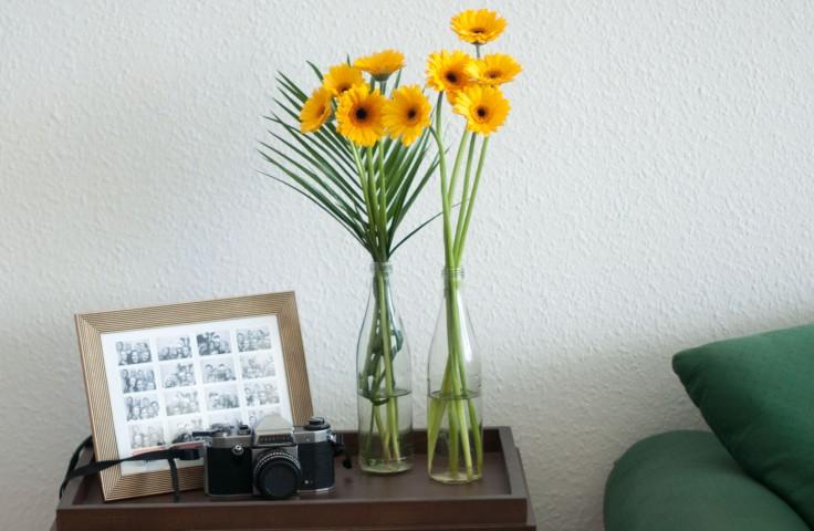 Blumen und Kamera